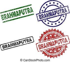 Grunge Textured BRAHMAPUTRA Stamp Seals - BRAHMAPUTRA seal...