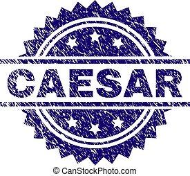 Grunge Textured CAESAR Stamp Seal - CAESAR stamp seal...