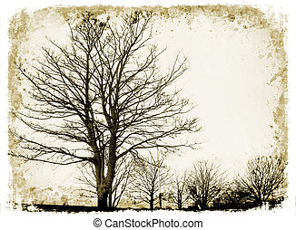 Grunge trees on grunge background