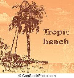 beach - grunge tropic beach palms on the yellow background