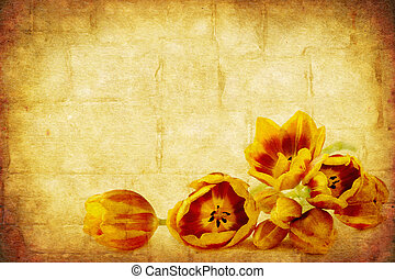 grunge, tulipanes