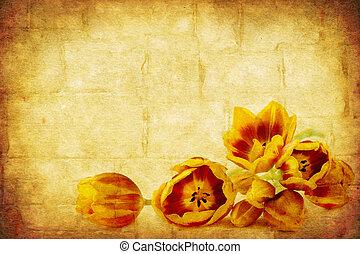 grunge, tulipes