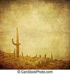 grunge, vild, bakgrund, väst, landskap