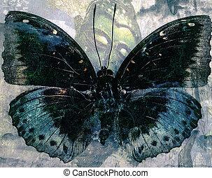 grunge, vlinder, achtergrond, textuur