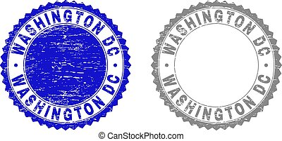 Grunge WASHINGTON DC Scratched Watermarks