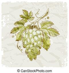 grunge, winogrona, rocznik wina, -, ilustracja, ręka,...