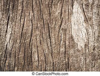 Grunge wood texture