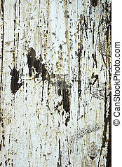 grungy background - grungy texture