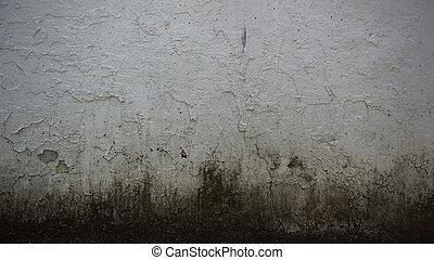 grungy, betongvägg, bakgrund