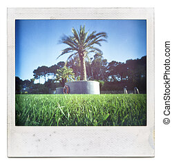 Grungy grainy and dusty instant film frame with saturated summer image, isolated on white background