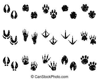 grungy, lábnyom, útvonal, állat, ikon