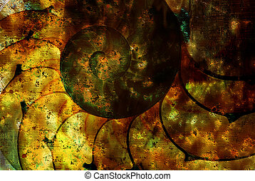 Grungy nautilus - Surrealistic abstract grungy background ...