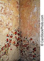 grungy, parede, antigas, canto