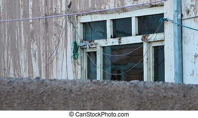 Grungy windows of building covered in mud and wires. -...
