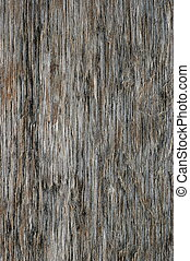 Grungy Wood Background