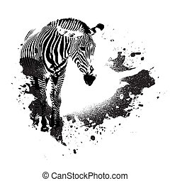 Grungy Zebra - Zebra in black and white with splatted paint...