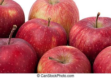 grupa, czerwone zachwycające jabłka