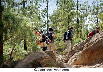 grupa, hiking, ludzie