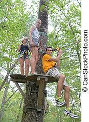 grupa, ludzie, młody, drzewa, bieg, przygoda
