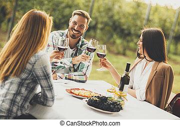 grupa, ludzie, młody, winnica, pijąc wino