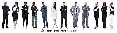 grupa, pomyślny, ludzie handlowe, odizolowany, biały