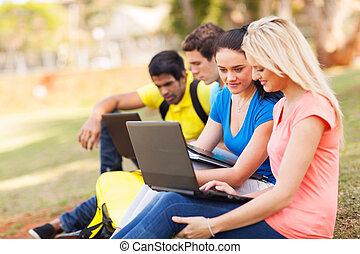 grupa, studenci, komputery laptopa, kolegium, używając
