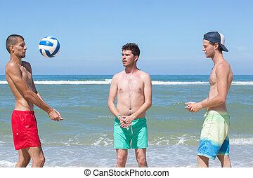 grupo amigos, voleibol jogo, praia