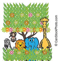 grupo, animal