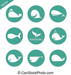 grupo, círculo, vetorial, fundo, baleia, branca