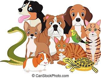 grupo, caricatura, animais estimação