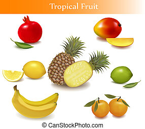grupo, con, diferente, sorts, de, fruta