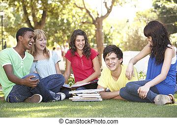 grupo, de, adolescente, estudiantes, charlar, juntos, en el estacionamiento
