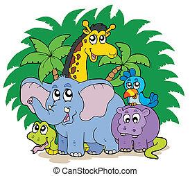 grupo, de, africano, animales