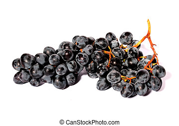 grupo, de, azul oscuro, uvas
