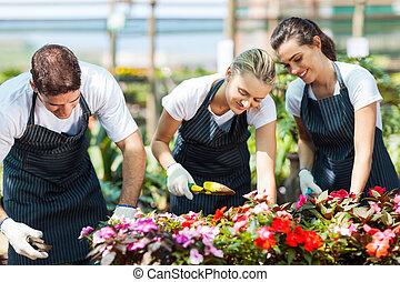 grupo, de, jovem, jardineiros, trabalhando