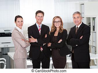 grupo, de, negócio, profissionais
