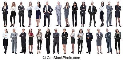 grupo, de, sucedido, pessoas negócio, isolado, branco