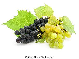grupo, de, verde y azul, uva, aislado, blanco