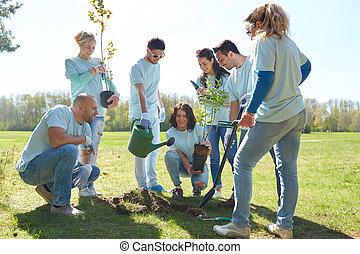 grupo, de, voluntários, plantando árvore, parque