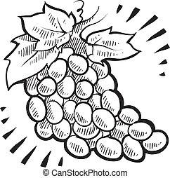 grupo, esboço, uvas