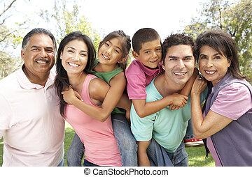 grupo, extendido, parque, familia