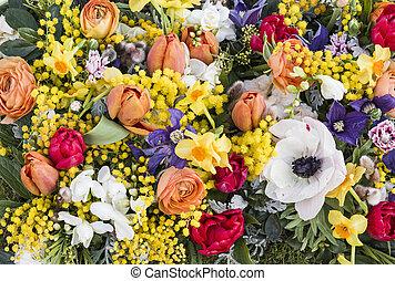 grupo, flores mola