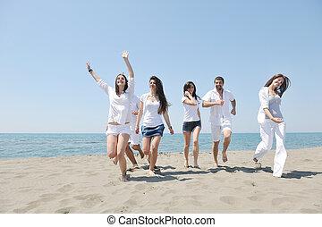 grupo, gente, joven, tenga diversión, playa, feliz