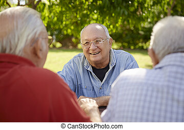 grupo, homens, parque, rir, divertimento, sênior, tendo