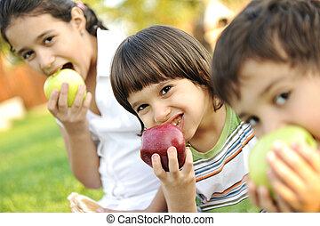 grupo pequeno, de, filhos comendo, maçãs, junto, shalow, dof