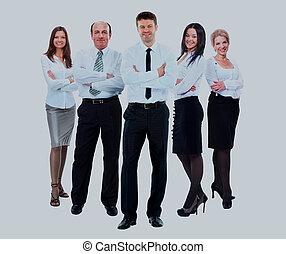 grupo pessoas empresariais, em, branca, shirts.