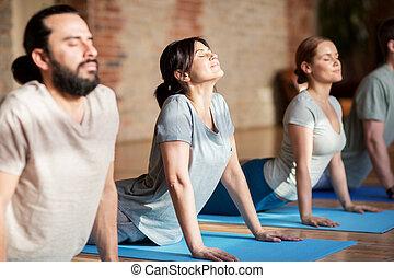 grupo pessoas, fazendo, ioga, pose cão, em, estúdio