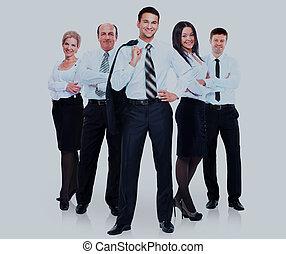 grupo, pessoas negócio, isolado, experiência., team., branca