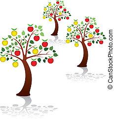 grupo, pomar maçã, parque, árvores, vetorial, ou