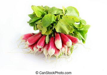 grupo radishes
